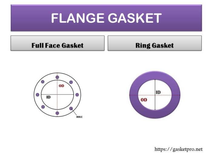 ปะเก็นหน้าแปลน Flange Gasket.jpg